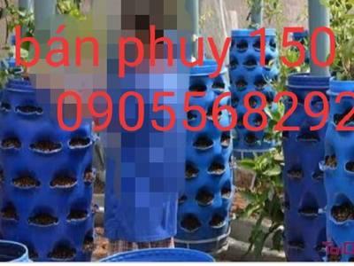 Bán thanh lý thùng phuy nhựa các loại phuy nhựa cột bè làm phao Quảng Nam Huế Quảng Bình Đà Nẵng 5