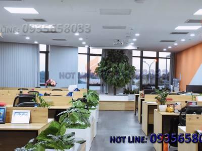 Cho thuê văn phòng tòa nhà Đường Việt ngay trung tâm tp Đà Nẵng 6