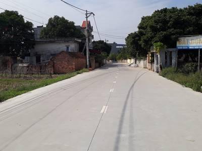 Đất Quang Tiền- Bình Minh-Bình Giang 6
