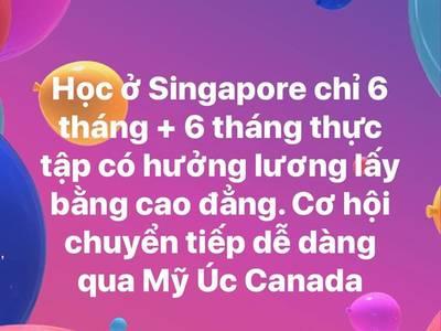 Du Học Singapore - Tiết kiệm mà lại hiệu quả 0