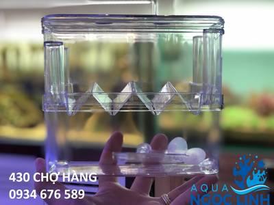 AQUA Ngọc Linh-430 Chợ Hàng-Chuyên Bể cá cảnh biển, bể cá rồng, bể thủy sinh tự nhiên 0