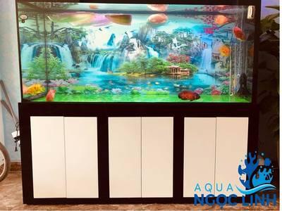 AQUA Ngọc Linh-430 Chợ Hàng-Chuyên Bể cá cảnh biển, bể cá rồng, bể thủy sinh tự nhiên 2