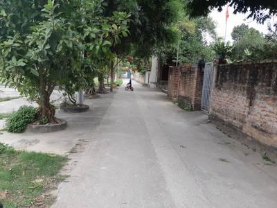 Bán đất gần đường Lê Hữu Tựu - Nguyên Khê, DT: 90m, MT:6m, Gía: 17tr/m. 0