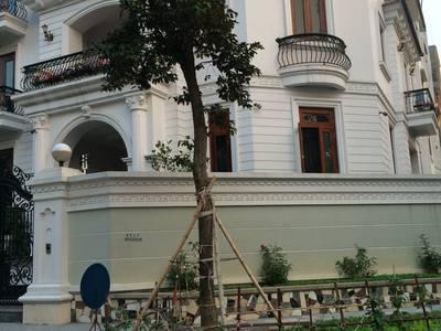 Cho thuê Biệt thự phố khu trung hòa nhân chính xây dựng 165m2 x 4 tầng nhà lô góc, kinh doanh đỉnh 0