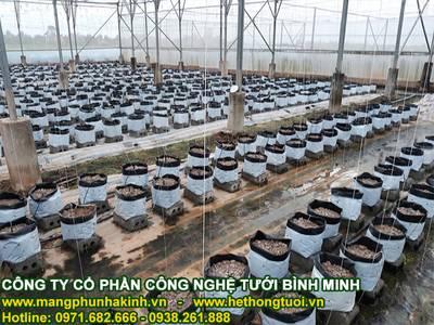 Lưới chắn côn trùng politiv, lưới chắn côn trùng tại hà nội,lưới chống côn trùng israel 3