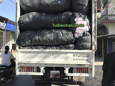 Xốp lưới bọc ổi giá rẻ tại Hưng Yên 2