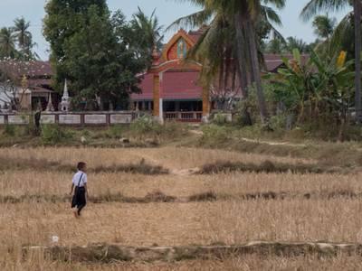 Tour Lào 4.000 đảo 4N3Đ: Siphadon - Paksong - Boloven Vietkite Travel 18