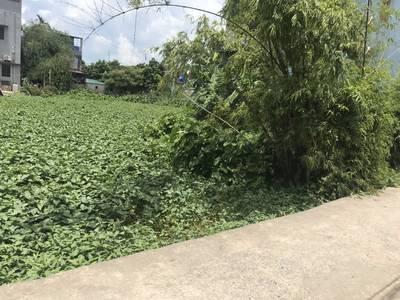 Bán lô đất chính chủ tại Thôn 2 Trà Phương, xã Hồng Vân, H. Ân Thi, Hưng Yên 2