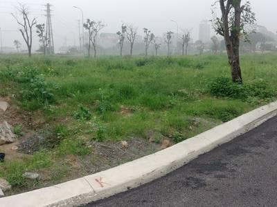 Bán Đất Đô Thị Như Quỳnh Văn Lâm Hưng Yên 75m   85m2. MT 5m. 3