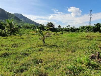 Bán hoặc Cho thuê đất Vườn 17000m2 gần Nha Trang 8