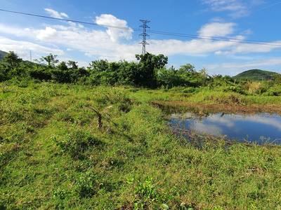 Bán hoặc Cho thuê đất Vườn 17000m2 gần Nha Trang 1