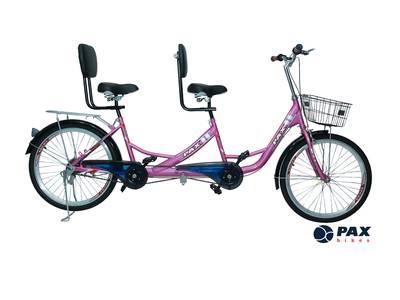 Mẹo mua xe đạp đôi giá rẻ nhưng chất lượng rất tốt 1