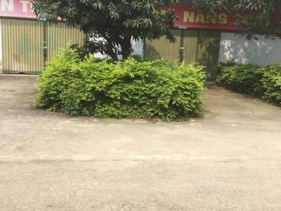 Bán đất tặng nhà xưởng tại huyện Yên mỹ - Hưng Yên 3