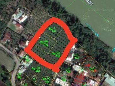 Gia đình cần bán lô đất thuộc xã Diên Lạc, Diên Khánh, Khánh Hoà 2