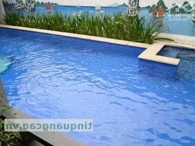 Cho thuê biệt thự ven biển 11 Lê Văn Miến phường Hòa Minh 2