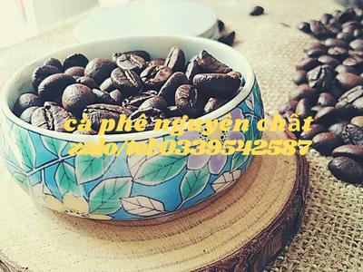 Cung cấp cà phê robusta và arabica nguyên chất tại Bình Dương 2
