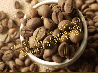 Chuyên cung cấp cà phê hạt tại bến cát bình dương 2