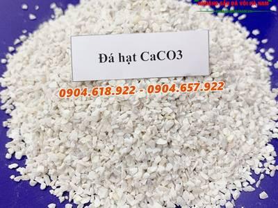 Cung cấp nguyên liệu cho thức ăn chăn nuôi có hàm lượng Canxi cao 6