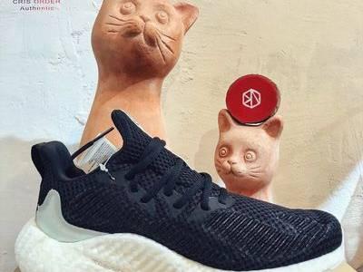 Giày chính hãng adidas alphaboost parley size 8 us 0