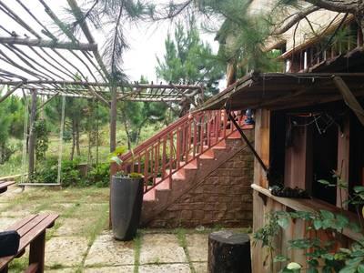 Cần bán trang trại nghỉ dưỡng tại xã Lộc Châu,  TP Bảo Lộc, Lâm Đồng. 8