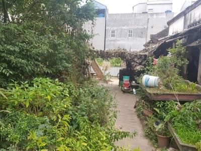 Cần bán đất mặt tiền 5m, giá tốt nhất tại Tiên Du, Bắc Ninh 2