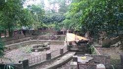 Cho thuê đất trang trại ở Sóc Sơn