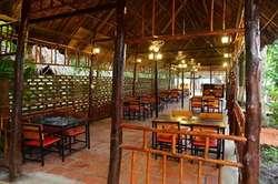 Cho thuê mặt bằng sân vườn quận ninh kiều làm làng nướng giá dưới 30 triệu
