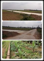 Bán đất thổ cư, xã Thanh Đa huyện Phúc Thọ, trên đường vào Đền Hai Bà Trưng