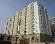 Cần cho thuê gấp căn hộ Him Lam Nam Khánh Quận 8, Dt : 90 m2, 2PN, giá : 8 tr/th