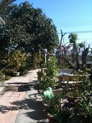 Bán nhà và đất mặt tiền QL1 Chợ Lầu, Bắc Bình, Bình Thuận