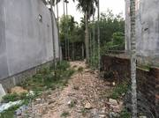 Cần bán gấp lô đất 140m2 đất cách UBND phường Quảng Phú,TP Quảng Ngãi 150 m