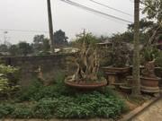 Bán đất mặt đường tại vân hòa ba vì hà nội