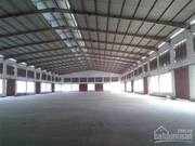 Chính chủ cho thuê kho xưởng 1500 m2, bãi đất trống 5000 m2 ở mặt đường 610 LÊ THÁNH TÔNG giá rẻ