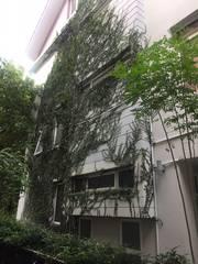 Bán Biệt thự KDC Phú Long, Đường Nguyễn Hữu Thọ Nhà Bè, có sân vườn riêng giá 15 tỷ