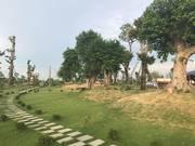 Khuyến mại cực hấp dẫn từ chủ đầu tư đất nền Phú Cát city, gần khu CN cao Hòa Lạc