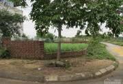 Bán đất thổ cư diện tich 300m2, Quan Hương, Thôn 5, Xã Phú Cát