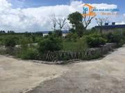 Chính chủ cần bán hoặc cho thuê đất trang trại tại xã Kiến Thiết, Tiên Lãng, Hải Phòng