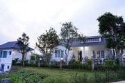Người Hà Nội sốt sình sịch với biệt thự Hoàng yến 300m2 chỉ 900tr