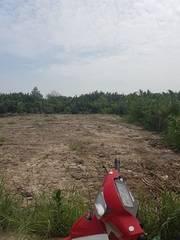 Đất cho thuê  820m2  mặt tiền Đường Lê Đình Chi, Ấp 3, Xã Lê Minh Xuân, Huyện Bình Chánh