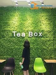Sang nhượng quán đồ uống Tea Box số 23 Đinh Tiên Hoàng, Hồng Bàng, Hải Phòng