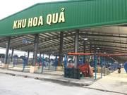 Bán kiot HOA QUẢ chợ đầu mối Sở Dầu, Hồng Bàng giá 250tr