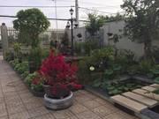Bán biệt thự mini sân vườn 2 mặt tiền QL 51, trục đường BRVT-TPHCM