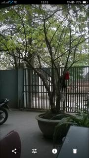 Bán nhà mặt đường kênh phường lộc vượng