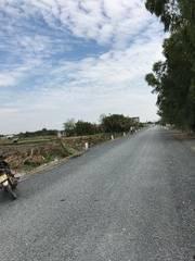 Đất ruộng 60m x 20m sổ hồng riêng mặt tiền đường rạch chim   nguyễn văn tạo kéo dài