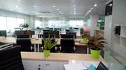 Cho Thuê VĂN PHÒNG trọn gói - full dịch vụ - chỗ ngồi chia sẻ