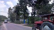 Cần bán đất khu du lich sinh thái vườn cây ăn trái xa thanh tuyền
