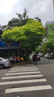 Bán nhà mặt tiền góc ngã 4 Lê Đại Hành-Trần Bình Trọng, Nha Trang, Khánh Hòa