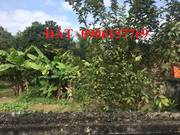 CHÍNH CHỦ Bán NHÀ   ĐẤT mặt đường 208 cạnh UBND Xã Lê Lợi H.An Dương.