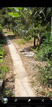 Chính chủ bán lô đất vườn mặt tiền đường Huyện 70, Cai Lậy, Tiền Giang