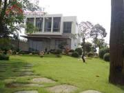 Xuất Cảnh Định Cư Chính Chủ Cần Bán Biệt Thự Vườn Đường Dương Quản Hàm, Phường 6, Quận Gò Vấp